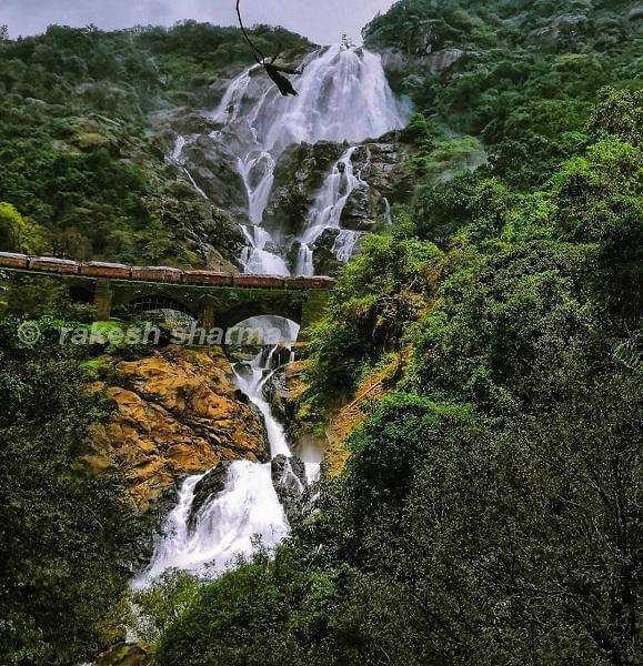 दूधसागर फाल्स, गोवा