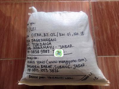 Benih padi yang dibeli  TATI Indramayu, Jabar. (Setelah packing karung ).