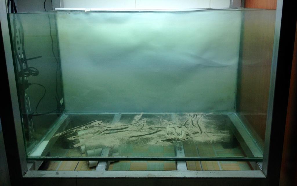 hướng dẫn làm hồ thủy sinh nuôi tép sula