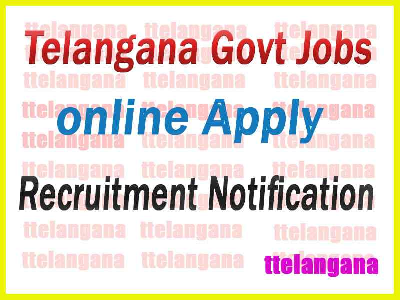 Telangana Govt Jobs Online Application