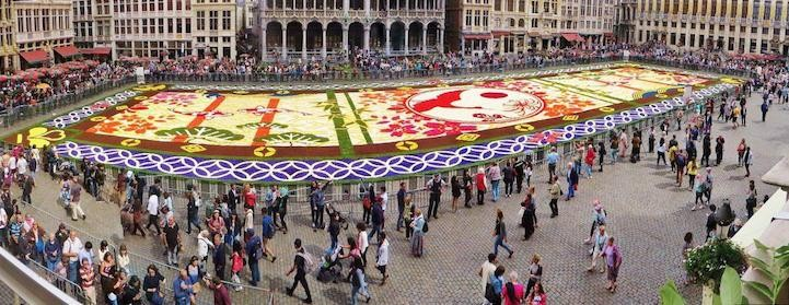 Belgium Makes Enormous Flower 'Carpet' Out of 600,000 Blooms To Celebrate 150 Years of Friendship With Japan
