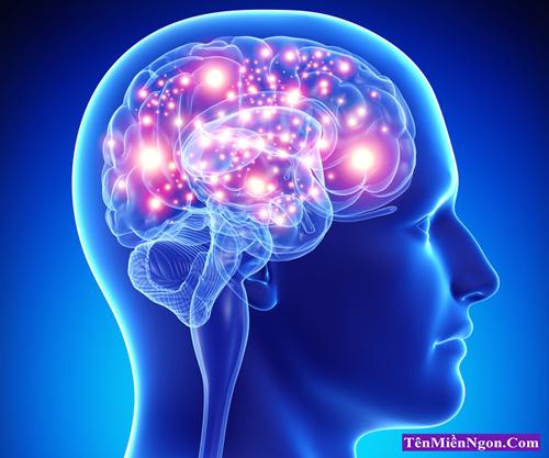 Những nguy cơ và biểu hiện của Ung thư Não