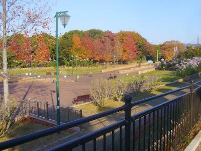 寝屋川公園 中央広場