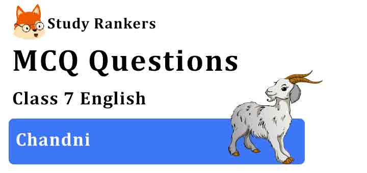 MCQ Questions for Class 7 English Chapter 7 Chandni An Alien Hand
