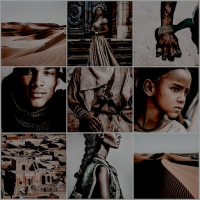 a song of wraiths and ruin aesthetic moodboard ownvoices