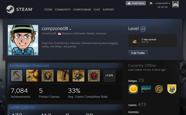 Profile Steam