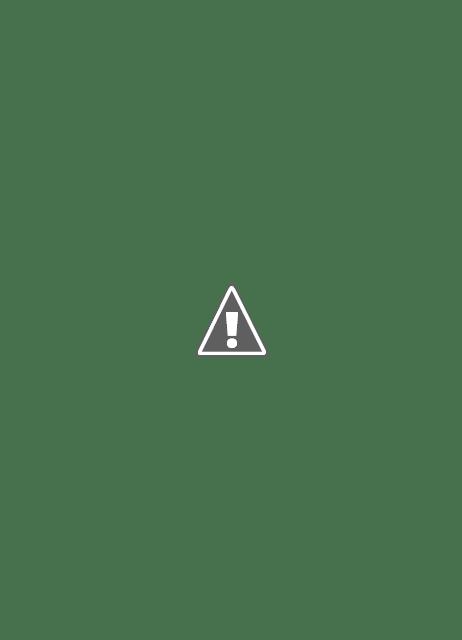 Tim Bersinar Kecamatan Selagai Lingga Membersikan APK Serentak Sesuai Peraturan Bawaslu dan KPU Lamteng