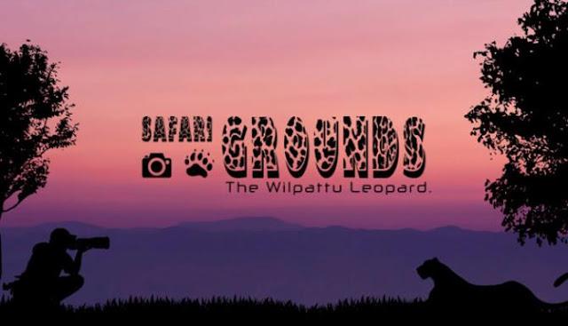 Safari-Grounds-The-Wilpattu-Leopard-Free-Download