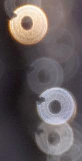 bizarre rings