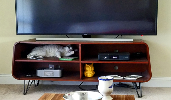 image of Olivia the White Farm Cat lying inside a section of the TV stand, 'waving' at me with one paw