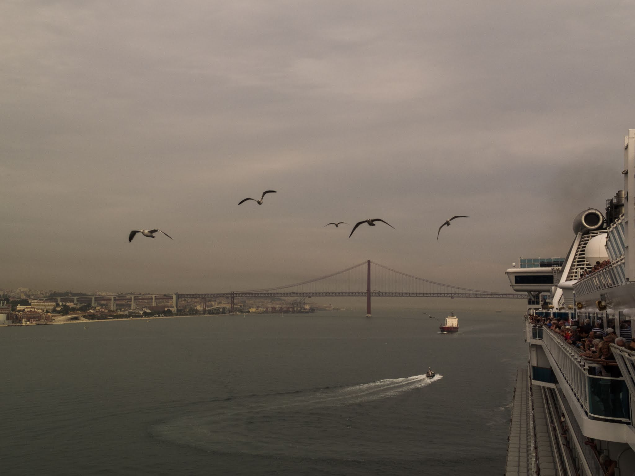 Leaving the port of Lisbon on a cruise ship accompanied by seagulls with the 25 de Abril Bridge in the background.
