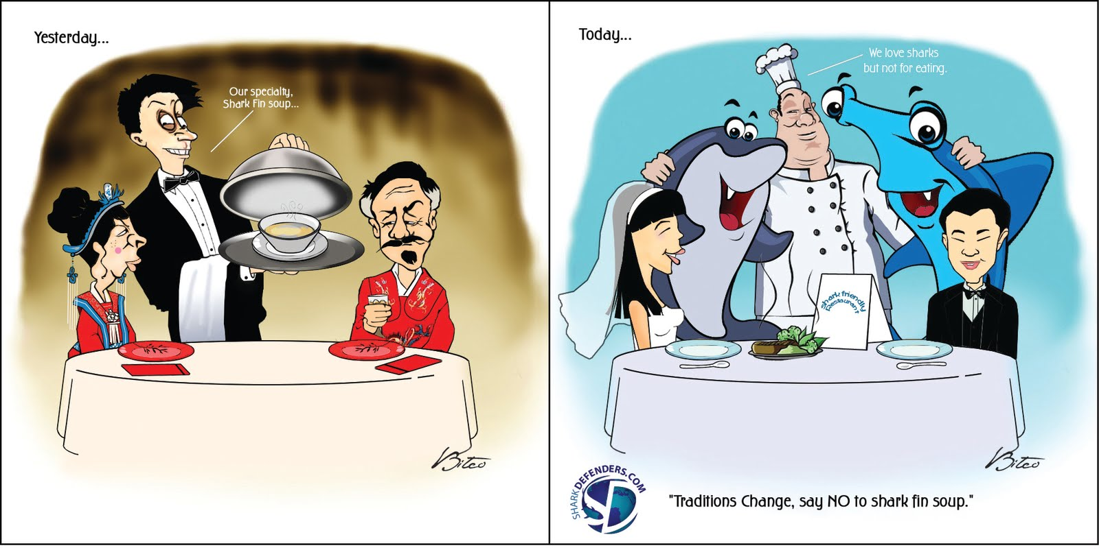 Traditions Change Say No To Shark Fin Soup Pictures