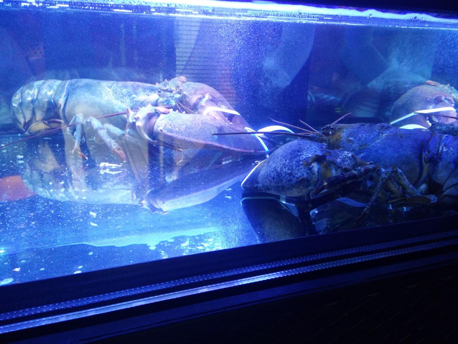 E-Wen Hooi: Burger & Lobster @ RW Genting