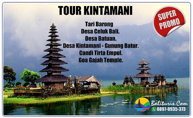 BALI TOUR KINTAMANI