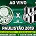 Jogo Palmeiras x Ponte Preta Ao Vivo 20/03/2019