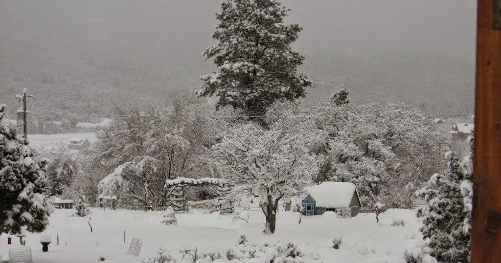 Pine Valley Blog: Let it Snow!