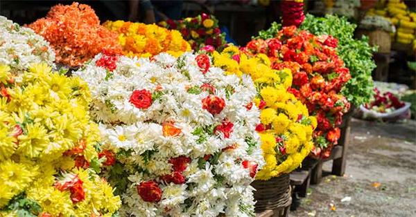 Abu Dhabi, News, Gulf, Onam, Celebration, World, Business, Onam celebration in UAE; 25 tonnes of Indian flowers to Gulf