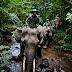 Wisata Lampung, Yuk Kunjungi Taman Nasional Way Kambas