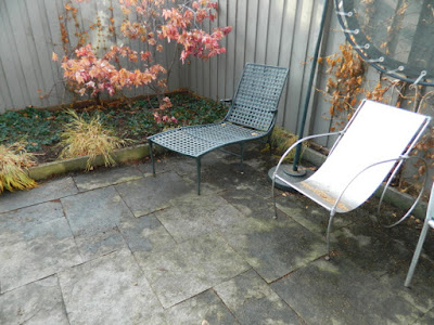 Toronto Cabbagetown Backyard Fall Cleanup After by Paul Jung Gardening Services--a Toronto Organic Gardening Company