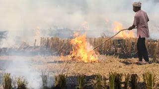 farmer-fine-to-burn-parali
