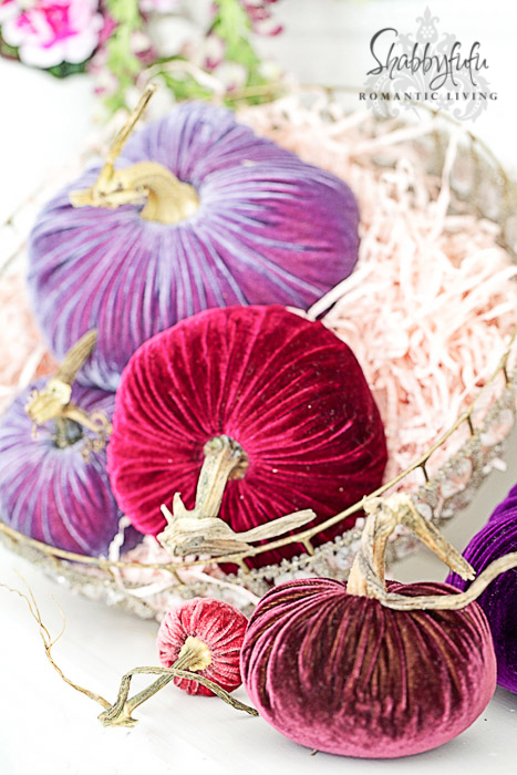 plush pumpkins velvet pink