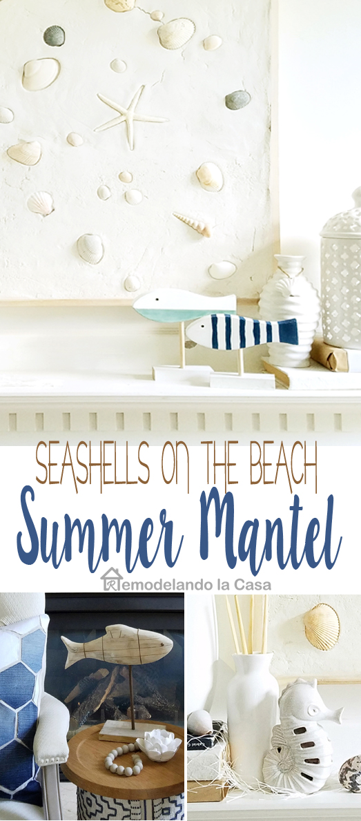 seashells wall art and summer decor