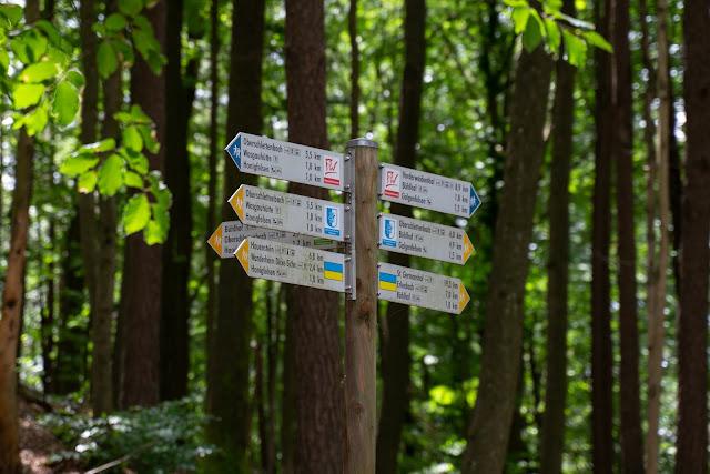 Wasgau-Felsenweg | Wandern Südliche Weinstraße | Naturpark Pfälzerwald 07