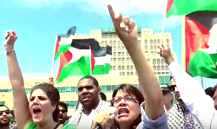 Image result for rashida tlaib at palestinian rally