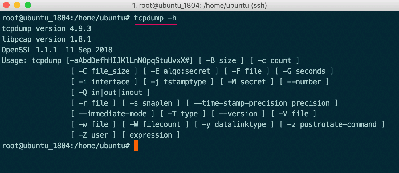 tcpdump 指令參數