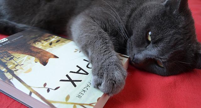 książka, literatura, Pax, Sara Pennypacker