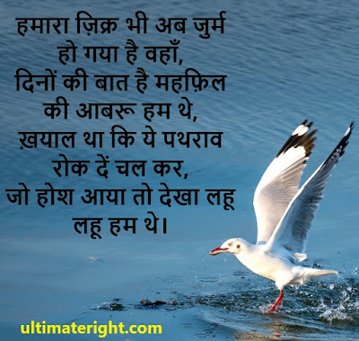 TOP Best evergreen shayari status all time