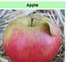 Apple is a Miracle Food for Healthy Digestion