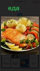 в тарелке приготовлена еда картошка с рыбой
