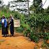 Tracing the origins of Sri Lankan tea pickers