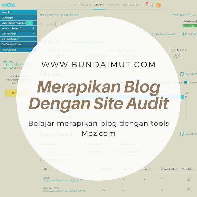Site audit blog