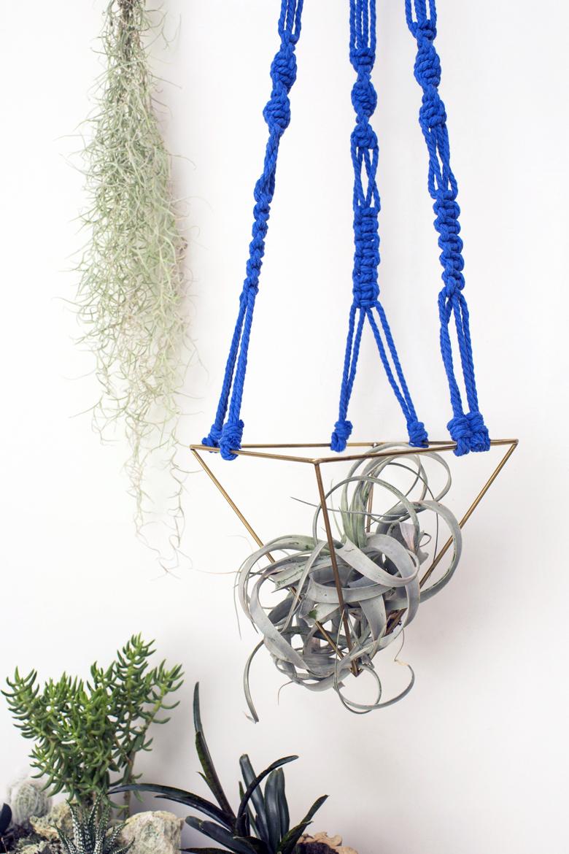 Macradenia un proyecto donde el macrame cobra vida de una forma maravillosa, creaciones únicas para tus plantas y para decorar espacios de una manera espectacular