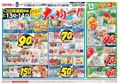 【PR】フードスクエア/越谷ツインシティ店のチラシ6月13日号