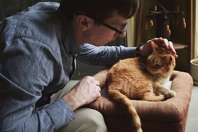 A man comforts a ginger cat resting on a foot stool
