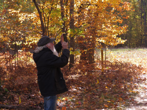person taking pictures of fall colors