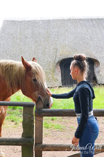 Freilichtmuseum Molfsee Norddeutschland Pferd