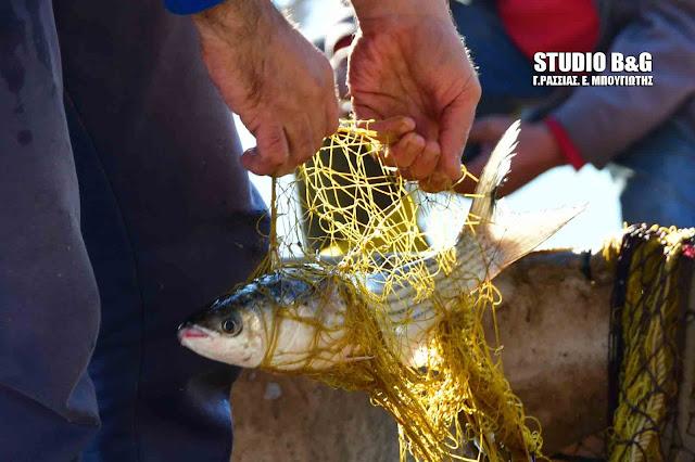 Πρόσκληση για οικονομική ενίσχυση αλιέων