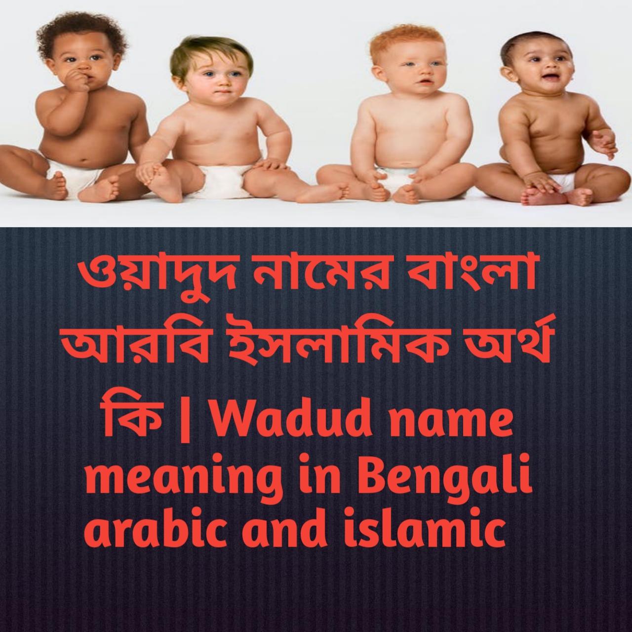 ওয়াদুদ নামের অর্থ কি, ওয়াদুদ নামের বাংলা অর্থ কি, ওয়াদুদ নামের ইসলামিক অর্থ কি, Wadud name meaning in Bengali, ওয়াদুদ কি ইসলামিক নাম,