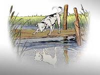 Dongeng Fabel Pendek - Dongeng Anjing yang Rakus dan Sepotong Tulang
