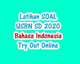 Latihan Soal USBN SD Bahasa Indonesia 2020 Online