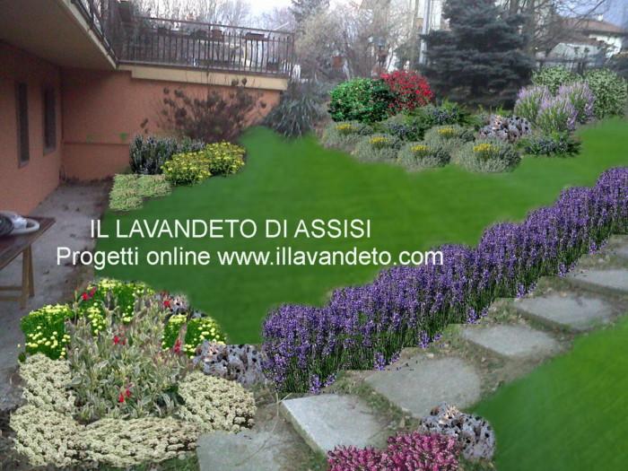 Progetto piccoli giardini aiuole for Laghetti nei giardini