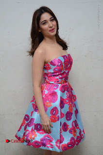 Actress Tamanna Latest Images in Floral Short Dress at Okkadochadu Movie Promotions  0081.JPG