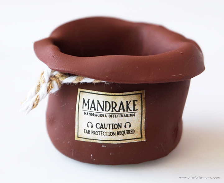 Mandrake Pot with Label