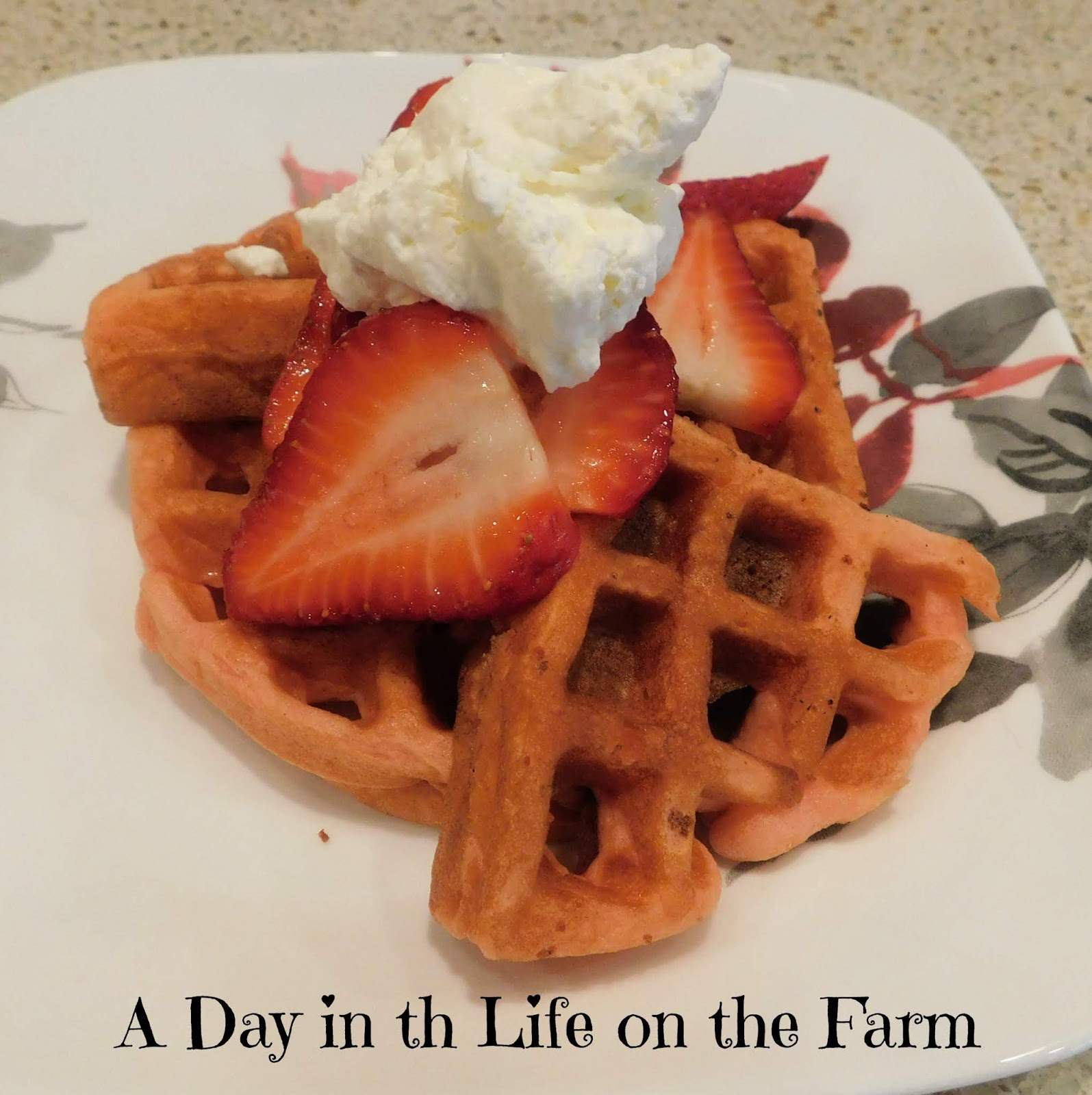 Strawberry Cake Waffles