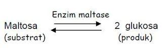 Ayo Belajar Katalis Dalam Kimia
