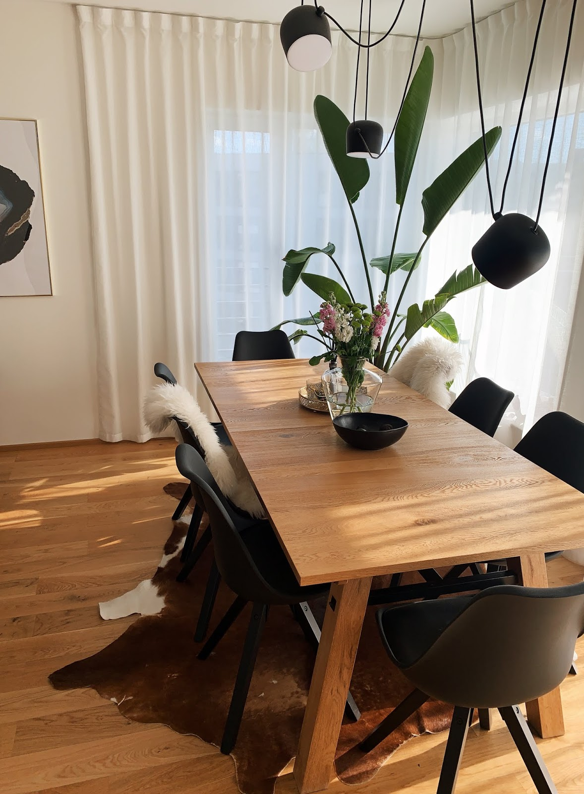 dining table strelitzia nicolai flos aim lamp cowhide rug